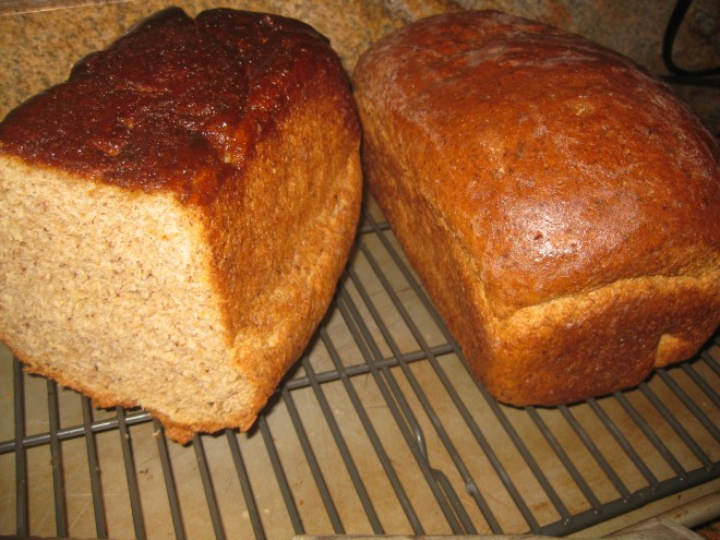 Homemade Whole Wheat Bread with Honey