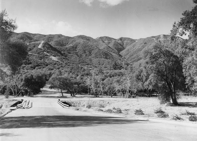 The history of Whiting Woods, Glendale