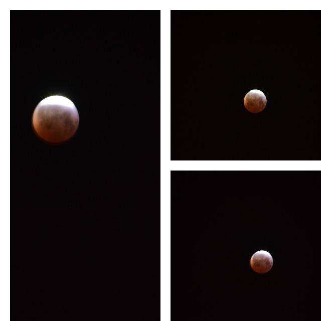 blood moon meaning virgo - photo #42