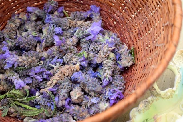 dried lavendar