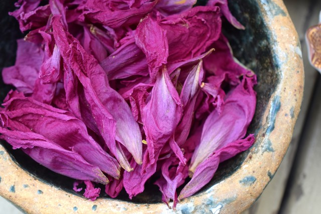 dried peonies