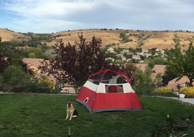 Conference, Sukkot, tents