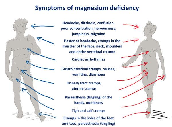 Choosing a good Magnesium supplement
